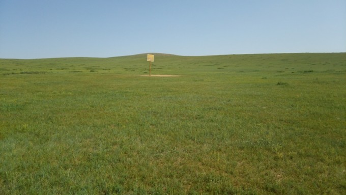 この大草原で何をするかは!あなたの自由。